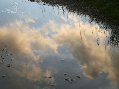 IMG_0526_skypuddle-400x300