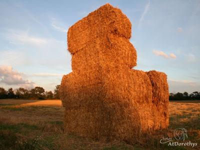 haystack400_300